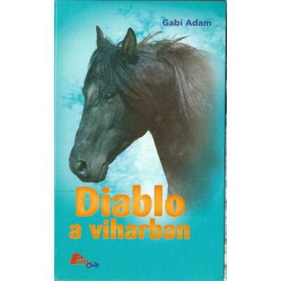 Gabi Adam: Diablo a viharban (Diablo 5.)